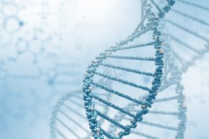 Tipos de células estaminais utilizadas para a regeneração cartilaginosa